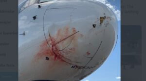Uçak Kalkışta Kuş Sürüsüne Girdi Hasar Aldı
